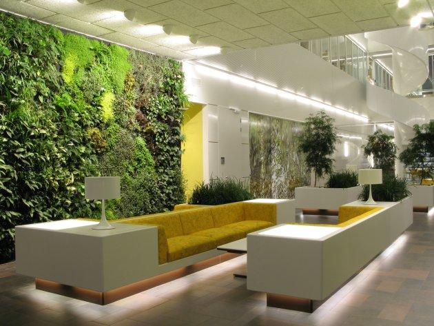 Дизайн офиса цветы