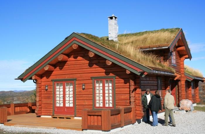 Внешний вид норвежского дома