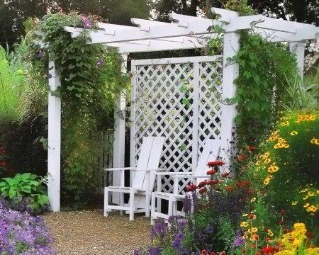 Перголы для украшения сада