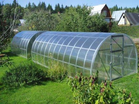 Теплицы из поликарбоната – отличная альтернатива стеклянным сооружениям