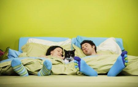 Как превратить обычный сон в наслаждение? - Выбрать удобный матрас!