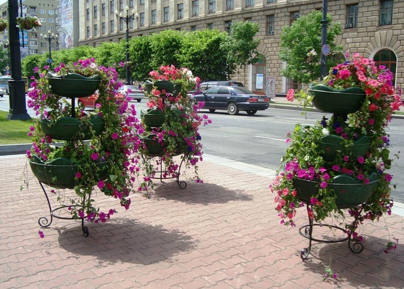 велосипедов цветы для уличных вазонов резка выполняется